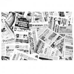 Papel Antigrasa Periódico 30x38cm